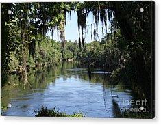 Suwanee River Vista Acrylic Print by Theresa Willingham