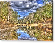 Suwannee River Scene Acrylic Print by Donald Williams