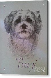 Suzi Acrylic Print by Debra Piro