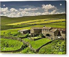 Swaledale Farm Acrylic Print