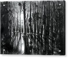 Swamp At Night Acrylic Print