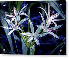 Acrylic Print featuring the photograph Swamp Lilies by Steven Sparks