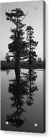 Acrylic Print featuring the photograph Swamp Mirror by Silke Brubaker