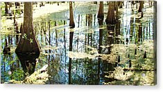 Swamp Wading 5 Acrylic Print by Van Ness