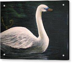 Swan I Acrylic Print