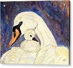 Acrylic Print featuring the painting Mother's Love Swan And Baby Painting by Ella Kaye Dickey