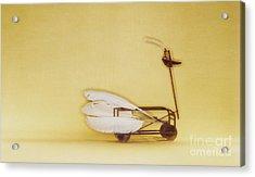 Swan On Wheels Acrylic Print