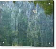 Swanee River Acrylic Print by Lyn  Perry