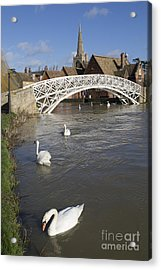 Swans At The Chinese Bridge Acrylic Print by Keith Douglas