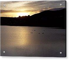 Swans On Loch Acrylic Print by George Leask