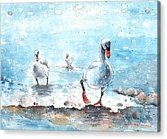 Swans On The March Acrylic Print by Miki De Goodaboom