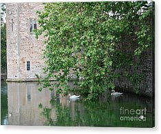 Swans Under The Palace Walls Acrylic Print by Linda Prewer