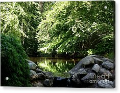 Swedish Forestlake Acrylic Print
