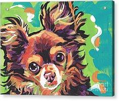 Sweet Choco Chi  Acrylic Print