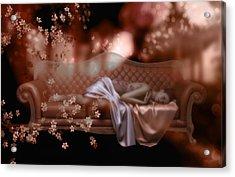 Sweet Dreams Acrylic Print by Shanina Conway