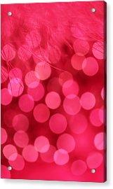Sweet Emotion Acrylic Print by Dazzle Zazz