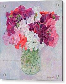 Sweet Peas Acrylic Print by Ann Patrick