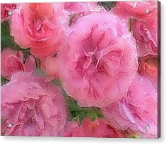 Acrylic Print featuring the mixed media Sweet Pink Roses  by Gabriella Weninger - David