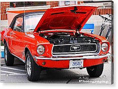 Acrylic Print featuring the photograph Sweet Stang... by Al Fritz