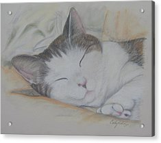 Sweet While Sleeping Acrylic Print