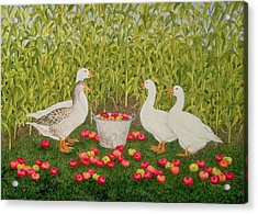 Sweetcorn Geese Acrylic Print by Ditz