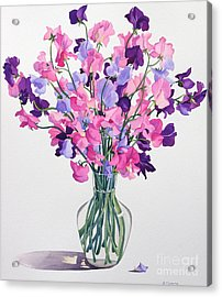 Sweetpeas Acrylic Print by Christopher Ryland