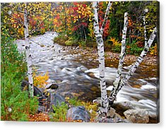 Swift River Acrylic Print