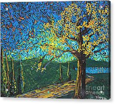 Swing By The Road Acrylic Print