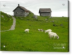 Switzerland Acrylic Print by Gregory Dyer