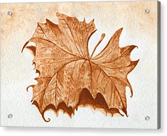 Sycamore #1 Oklahoma Red Dirt Artwork Tm Acrylic Print by Tanya Provines