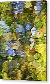 Sycamore Mosaic Acrylic Print by Christina Rollo