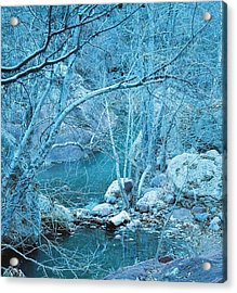 Sycamores And River Acrylic Print