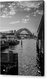 Sydney Harbour  Acrylic Print by Dasmin Niriella