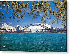 Sydney Harbour Skyline 2 Acrylic Print by Az Jackson