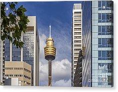 Sydney Tower Acrylic Print