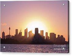 Sydney's Evening Acrylic Print