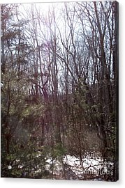 Acrylic Print featuring the photograph Sylphs by Melissa Stoudt