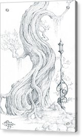 Acrylic Print featuring the drawing Sylvia And Her Lamp Drawing by Curtiss Shaffer