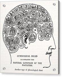 Symbolical Head Acrylic Print by English School