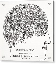 Symbolical Head Showing The Natural Acrylic Print by English School