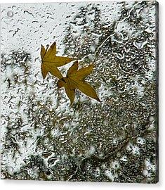 Symbols Of Autumn  Acrylic Print