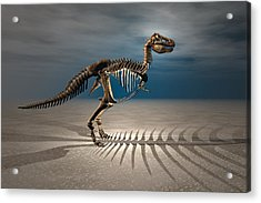 T. Rex Dinosaur Skeleton Acrylic Print by Carol and Mike Werner