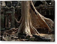 Ta Prohm Cambodia Acrylic Print by Bob Christopher