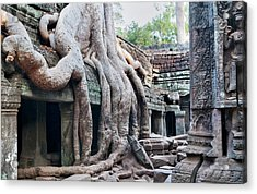 Ta Promh Temple In Angkor Cambodia Acrylic Print