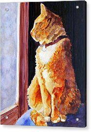 Tabby's Favorite Seat Acrylic Print by Jenny Armitage