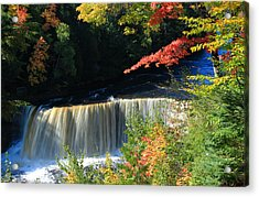 Tahquamenon Falls Autumn Acrylic Print by Rachel Cohen
