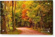 Take Me To The Forest Acrylic Print
