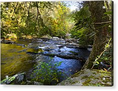 Take Me To The River Acrylic Print by Debra and Dave Vanderlaan