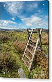 Take The Path Acrylic Print by Adrian Evans