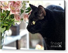 Take Time To Smell The Flowers Acrylic Print by Peggy Hughes